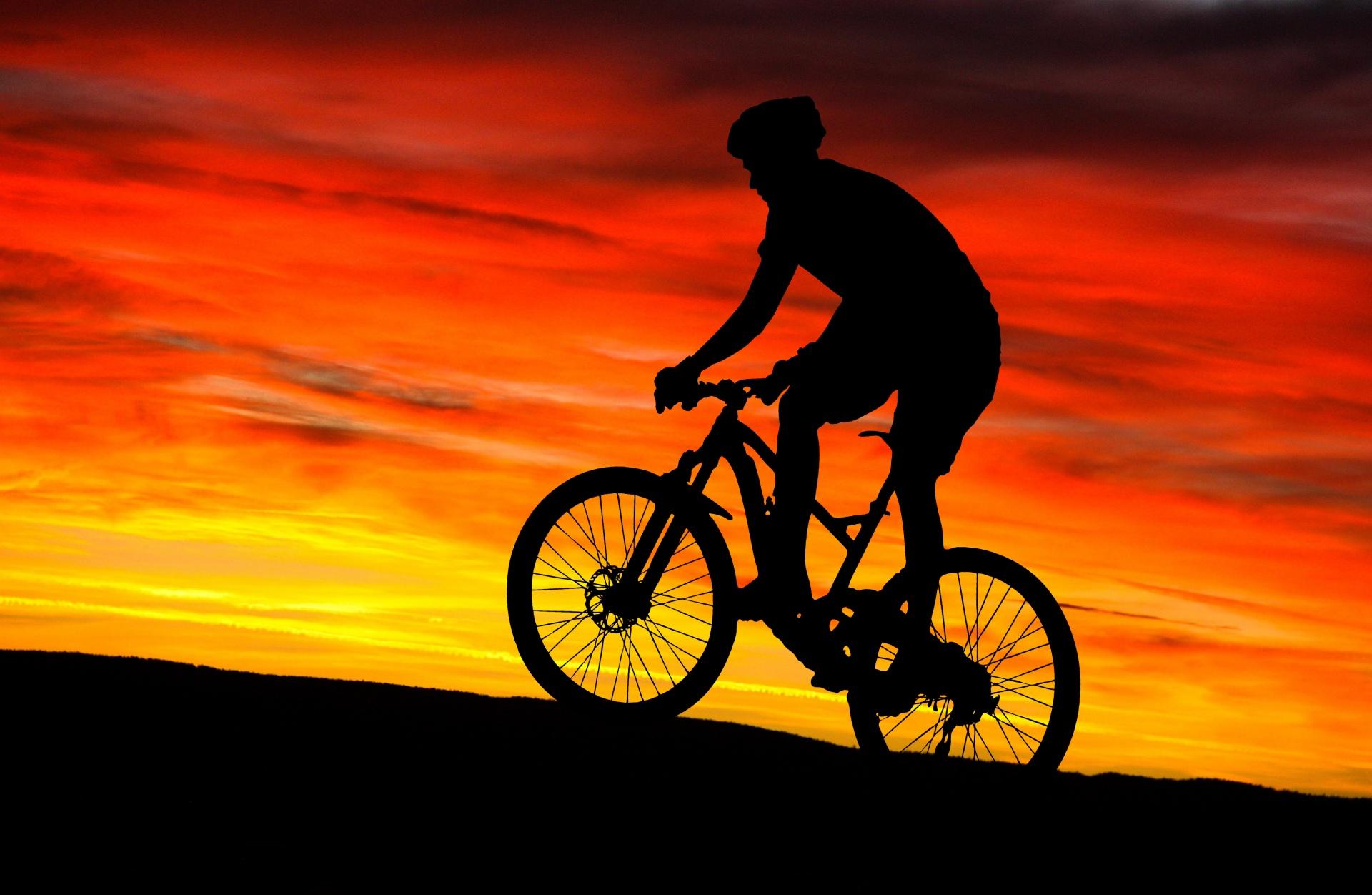 Правила, которые надо знать велосипедисту, чтобы не получить штраф в 2020 году